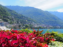 Beauty colorful red flowers on promenade in MONTREUX city at Lake Geneva in SWITZERLAND. With panoramic view on swiss alpine mountains range and clear blue sky Royalty Free Stock Photography