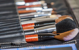 Beauty Concept and Ideas: Professional Set of Multiple Makeup Pa. Professional Set of Multiple Makeup Paintbrushes of Different Sizes  in One Case.Horizontal Stock Image