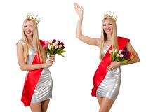 The beauty contest winner isolated on the white. Beauty contest winner isolated on the white royalty free stock image