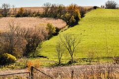 Beauty Of The Country Side. The beauty of the land though out the country side royalty free stock photography