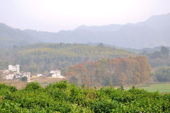 The beauty of the countryside in China Royalty Free Stock Photography