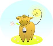 Beauty cow. Stock Photography
