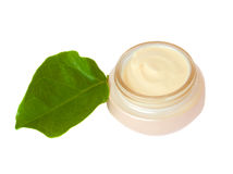 Beauty cream with green leaf Stock Photos