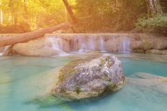Beauty deep forest stream waterfall Stock Images