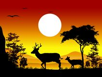 Beauty deer silhouettes with landscape background Royalty Free Stock Photo