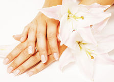 Beauty delicate hands with manicure holding flower Royalty Free Stock Photography