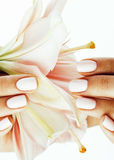 Beauty delicate hands with manicure holding flower lily close up isolated on white Stock Image