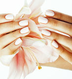 Beauty delicate hands with manicure holding flower lily close up isolated on white Royalty Free Stock Photo