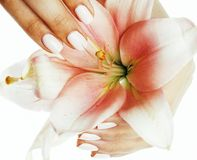 Beauty delicate hands with manicure holding flower lily close up isolated on white, spa concept Stock Photography