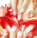 Beauty delicate hands with pink Ombre design manicure holding re Stock Image