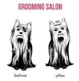 Beauty Dog Salon Template Stock Photography