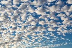 Beauty evening sky Stock Photography
