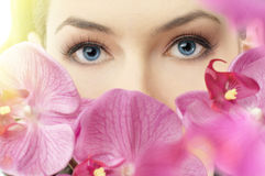 Beauty eye Stock Photo