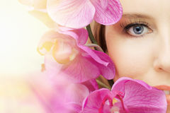 Beauty eye. The macro image of the beauty eye Stock Photos