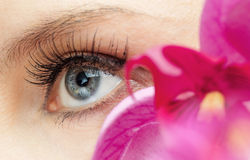 Beauty eye Royalty Free Stock Photography