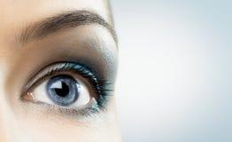 Beauty eye. The macro image of the beauty eye Stock Photography
