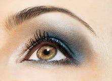 Beauty eye. The macro image of the beauty eye Stock Images
