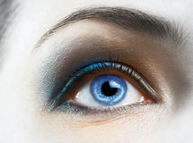 Beauty eye Royalty Free Stock Image