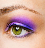 Beauty eye Royalty Free Stock Photos