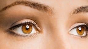 Beauty eye Royalty Free Stock Photography