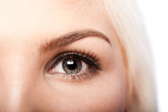 Beauty Eye and eyebrow Royalty Free Stock Photos