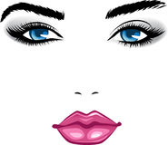 Beauty face girl. Abstract beauty girl face. Colorful  illustration Stock Photo