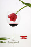 Beauty fades in wine. The problem of female alcoholism Royalty Free Stock Photos