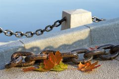 Beauty of  fading autumn. And rusty chain Stock Photography