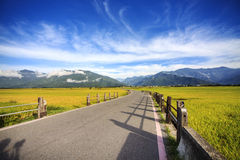 The beauty of the farmland in Taitung Taiwan Royalty Free Stock Images