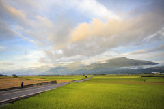 The beauty of the farmland in Taitung Taiwan Stock Photography