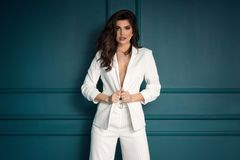 Beauty Fashion brunette model girl wearing stylish suit stock photos