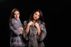 Free Beauty Fashion Model Girls In Blue Mink Fur Coat Royalty Free Stock Photo - 157052305