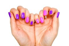 Beauty, fashion and Nail art concept. Heart made of woman hands whith shiny manicure close-up. Pink and purple colors of gel nail royalty free stock images