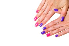 Beauty, fashion and Nail art concept. Manicure in nail spa salon -woman hands close-up with colored pink and purple gel nail polis stock photography
