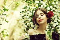 Beauty and fashion, girl with spanish makeup, rose in hair. Beauty and fashion, pretty girl with fashionable makeup and red lips, has rose flower in hair royalty free stock photos