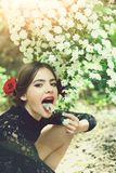 Beauty and fashion, girl with spanish makeup, rose in hair. Beauty and fashion, pretty girl with fashionable makeup and red lips, has rose flower in hair stock photo