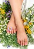 Beauty Feet Royalty Free Stock Image