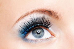Beauty female eye with blue make Royalty Free Stock Images