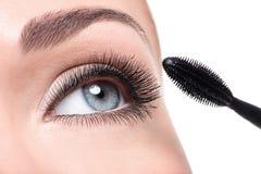 Beauty female eye with long false eyelashes Stock Photography