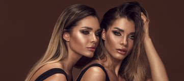 Two attractive twins women in glamour makeup. Beauty and femininity concept. Two attractive twins women in glamour makeup. Portrait photo royalty free stock image