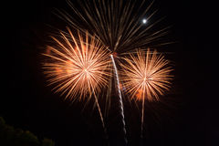 Beauty fire work for celebrate Royalty Free Stock Image