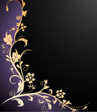 Beauty floral background Royalty Free Stock Photo