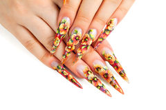 Beauty floral design nails. Stock Images