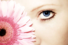 Beauty flower. A woman with blue eyes and a gerbera flower in front of her head Stock Photo