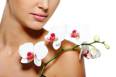 Beauty flower lying on nude  female shoulder Stock Images