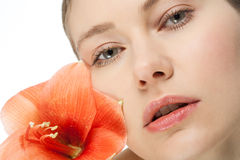 Beauty with flowers. Face of a young woman with a flower Stock Image