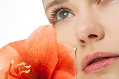 Beauty with flowers. Face of a young woman with a flower Royalty Free Stock Photo