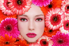 Beauty in flowers Stock Image