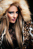 Beauty in fur Royalty Free Stock Photo