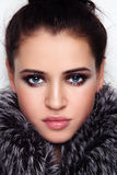 Beauty in fur Royalty Free Stock Photography